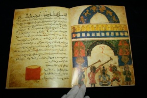 imd book